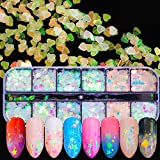Mrsyel 12 Boxes Holographic Glitter Nail Art Sequins Iridescent Mermaid Flakes Glitter Colorful Confetti Sticker Manicure Nail Art Supplies Decals Decoration Glitter (2-Fairy)