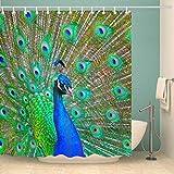 ZHTY Duschvorhänge Formbeständiger waschbarer Badevorhang für Badezimmer mit 12-teiligen Haken...