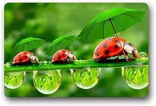 2018 Mats Best Funny Ladybug Umbrella Drops Door Mat Washable Doormat Mat Funny Welcome Entrance Mat 30