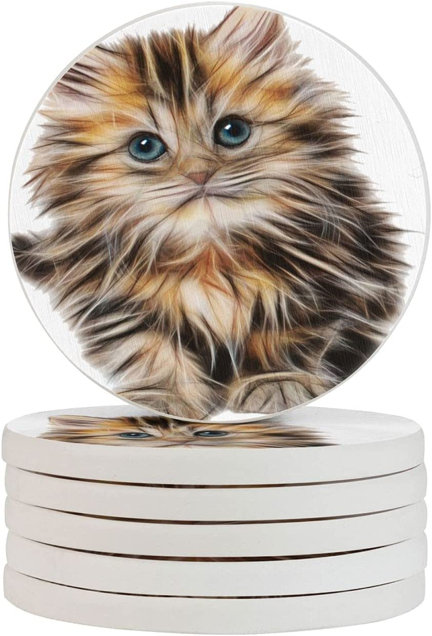 Cute Kitten Round Kansas City Mall Diatomite Cup 4in Raleigh Mall for Drink Table Set Coasters