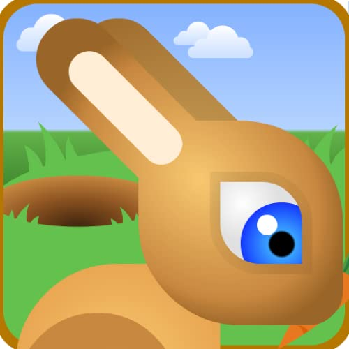 Bunny Rabbit Jump Race