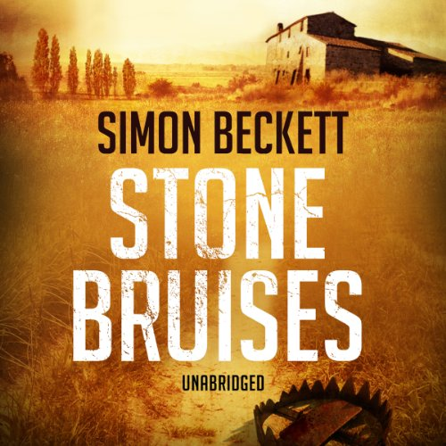 Stone Bruises audiobook cover art