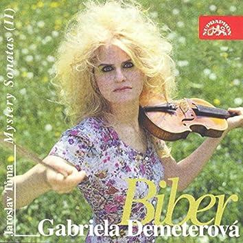 Biber: Mystery Sonatas, Vol. 2