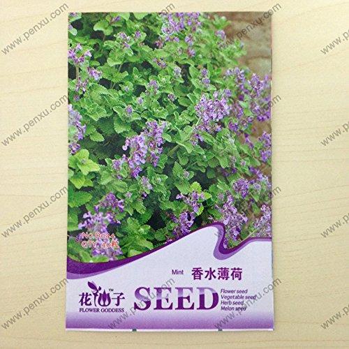emballage d'origine Graines vanille plantes, menthe graines de parfum, la floraison à maturité 80 jours, 30 particules de graines / sac