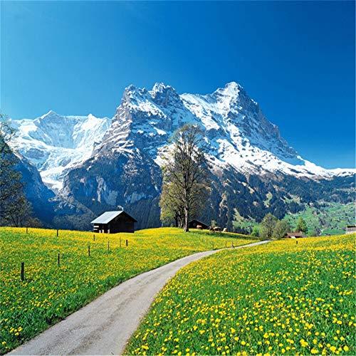 Sucsaistat Wandbild Tapete Für Wohnzimmer Schlafzimmer Tv Hintergrund Schweizer Alpen Landschaft Papel De Parede 3D Fototapete Wohnkultur, 400 * 280Cm