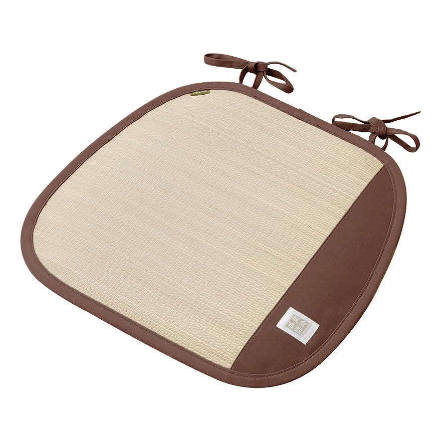 百科事典露出度の高いリスナー萩原 チェアパッド ブラウン 約W43×D41cm