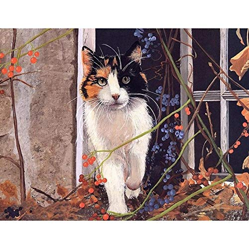 WEREWTR New 2020 Full Round Drill 5D DIY Diamond Painting Diamond Embroidery A cat Mosaic Cross Stitch Rhinestone Decoration 20X24inch No Frame