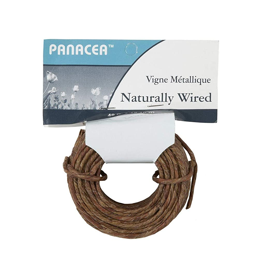 Darice Naturally Wrapped Vine Covered Craft Wire Rope with Rustic Feel for Wedding Crowns Woodland Crowns Head Wreaths Floral Arranging DIY Projects and Decorating 40 feet Brown
