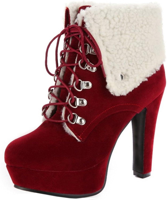 AicciAizzi Women Winter Warm Martin Boots Lace Up shoes High Heel
