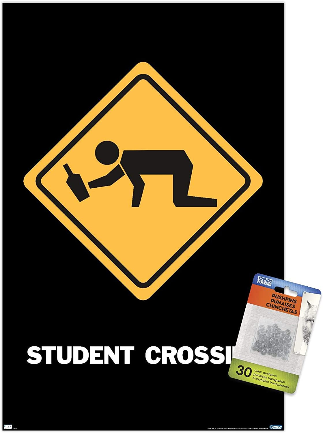 Student Crossing Wall Poster with Push Pins Sacramento Mall Bargain