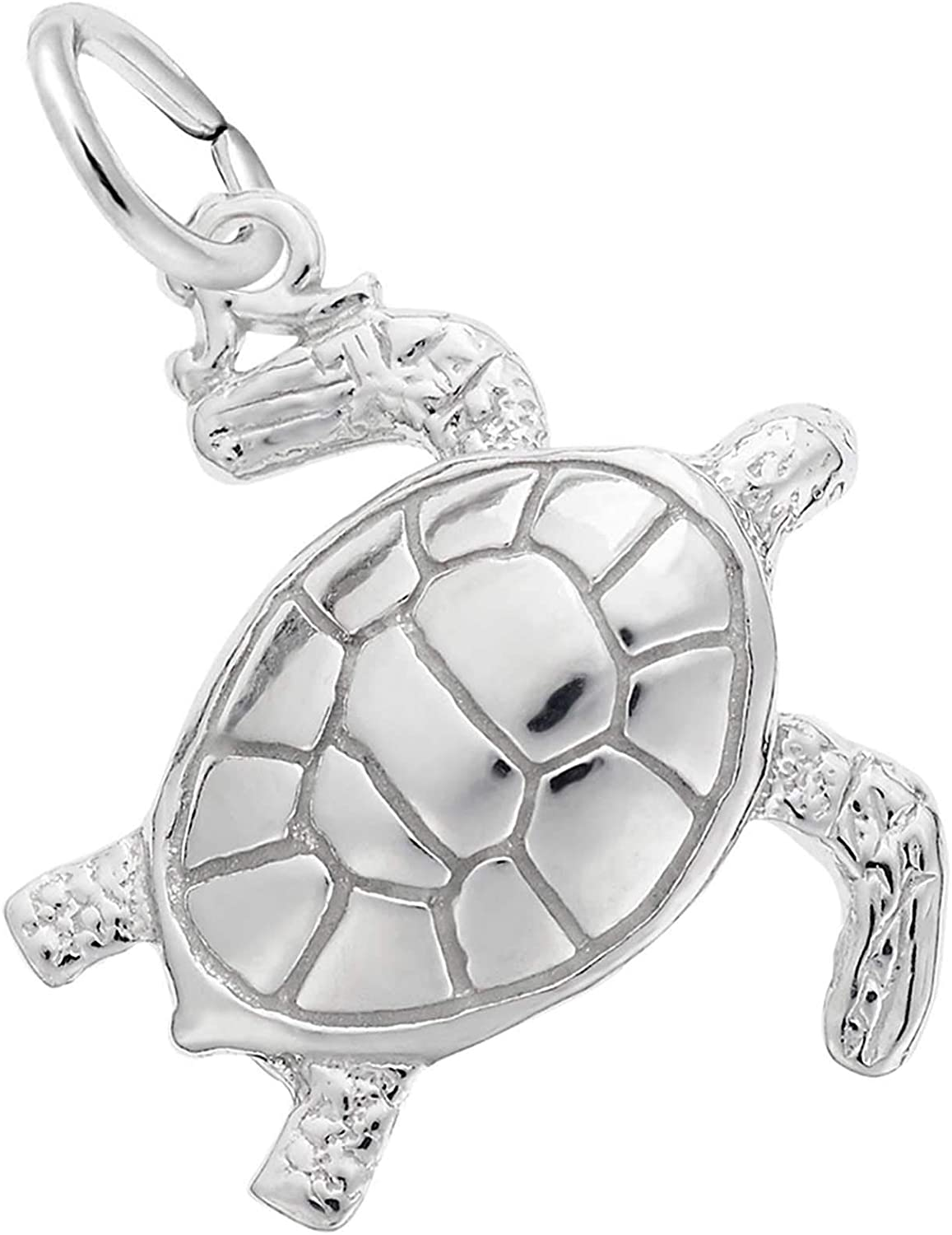 unisex Rembrandt Charms Ranking TOP18 Charm Tortoise