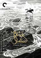 CRITERION COLLECTION: BLACK STALLION