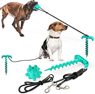 CoCoFoX Newest Dog Walking Artifact,High Elastic Pull Rope Dog Chew Ball Toy with Dog Leash and Dog Tie Out Stake Outdoor, Yard and Camping for Small Medium Large Dogs