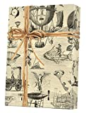 Extraordinary Voyages Gift Wrap Flat Sheet - 24' x 6'