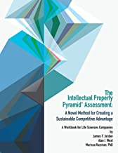 Intellectual Property Pyramid Assessment: A Novel Method for Creating a Sustainable Competitive Advantage