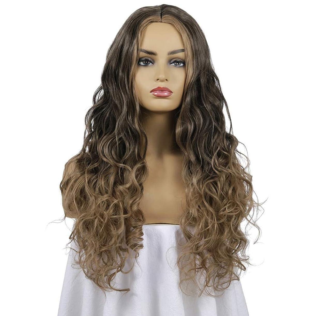 プロジェクターフルーツ運動する女性の長い巻き毛のウェーブのかかった髪のかつら26インチ魅力的な人工毛交換かつらと中間別れハロウィーンコスプレ衣装アニメパーティーかつら、黒と茶色のかつら