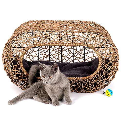 D+ Garden Fun Stackable Wicker Cat Bed Review