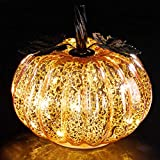denlix Mercury Glass Pumpkin Lights Fall Decor, Battery Operated LED Timer 5.5 Inches Decorative Pumpkins, Fall Centerpieces for Tables Decorations