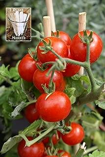 summer sweet tomato