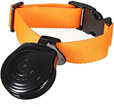 small camera for dog collar