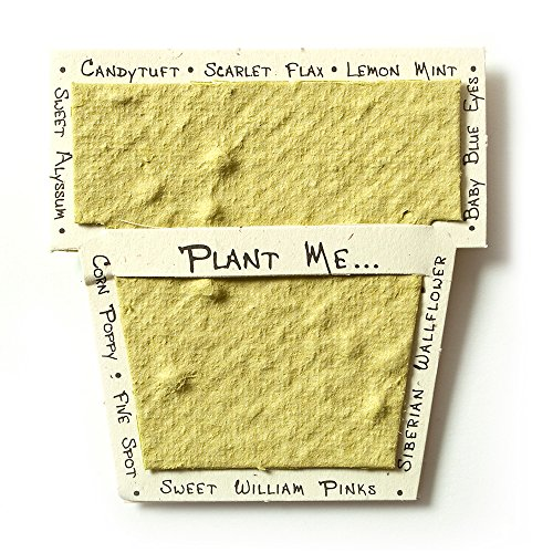 Bloomin Mini Chartreuse Pot-Shaped Seed Paper Enclosure Cards 9 Card Set - Perfect for Valentine's Day, Mother's Day and Wedding Anniversaries! Size: 2.25 x 2.25""