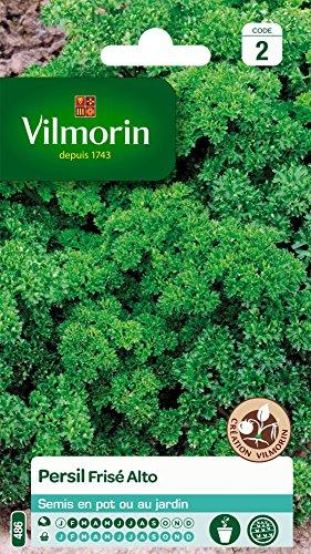 Vilmorin 3182670127915 3801542 Persil Frise Alto Creation, Vert, 90 x 2 x 140 cm