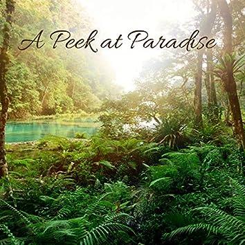A Peek at Paradise