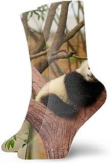 Calcetines Men & Women Athletic Siamese Fighting Fish Socks abstract Wicking Casual Socks Panda Sleeping8