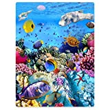 HommomH 60'x80' Blanket Comfort Warmth Soft Plush Throw for Couch Bright Tropical Fish