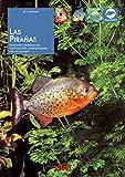 Las pirañas: Anatomía, alimentación, reproducción, enfermedades, cría en acuario