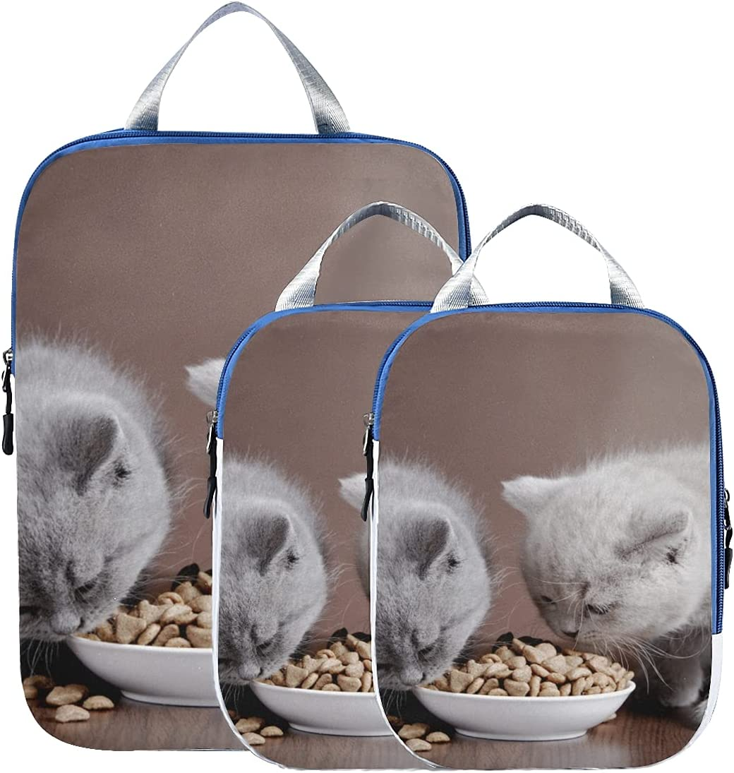 Compression Travel Bags Domestic Cat Bowl In Food Online Max 68% OFF limited product Compressio Eat