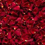 Confeti de pétalos de rosa biodegradable para bodas (Rojo, 2 Litros)
