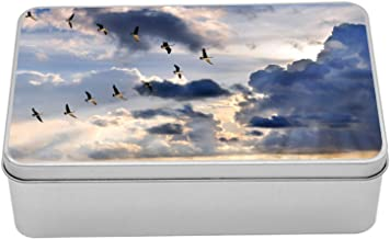 Lunarable Flying Birds Tin Box, Canadian Geese Flying in V Formation Sunburst, Portable Rectangle Metal Organizer Storage Box with Lid, 7.2