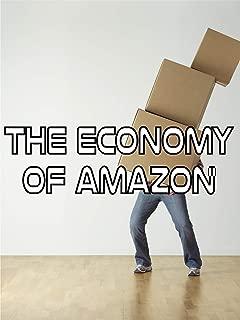 The Economy of Amazon