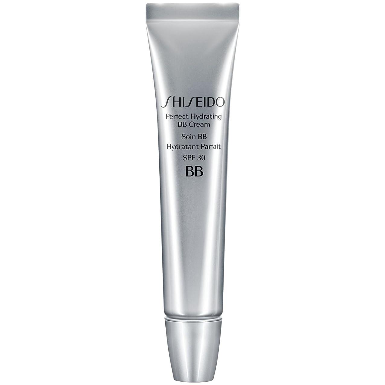 局飛行場シダ[Shiseido ] 資生堂完璧な水和BbクリームSpf 30 30ミリリットルの暗いです - Shiseido Perfect Hydrating BB Cream SPF 30 30ml Dark [並行輸入品]