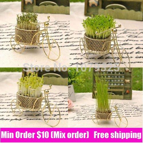 Motif de vélo Mini Bonsai vert mignon Herbal bureau Bosai avec des graines de purification d'air Herbe Bonsai détail et en gros bateau libre