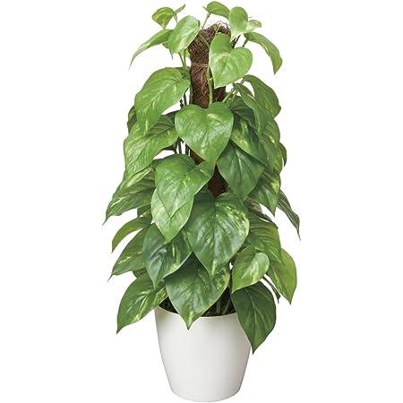 光触媒 人工観葉植物 光の楽園 フレッシュポールポトス 382A50