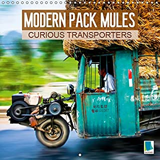 Modern pack mules: Curious transporters 2019: Fully laden: strange transporters (Calvendo Mobility) [Idioma Inglés]