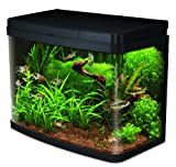 Interpet Insight Glass Aquarium Fish Tank Premium Kit, 40 Litre