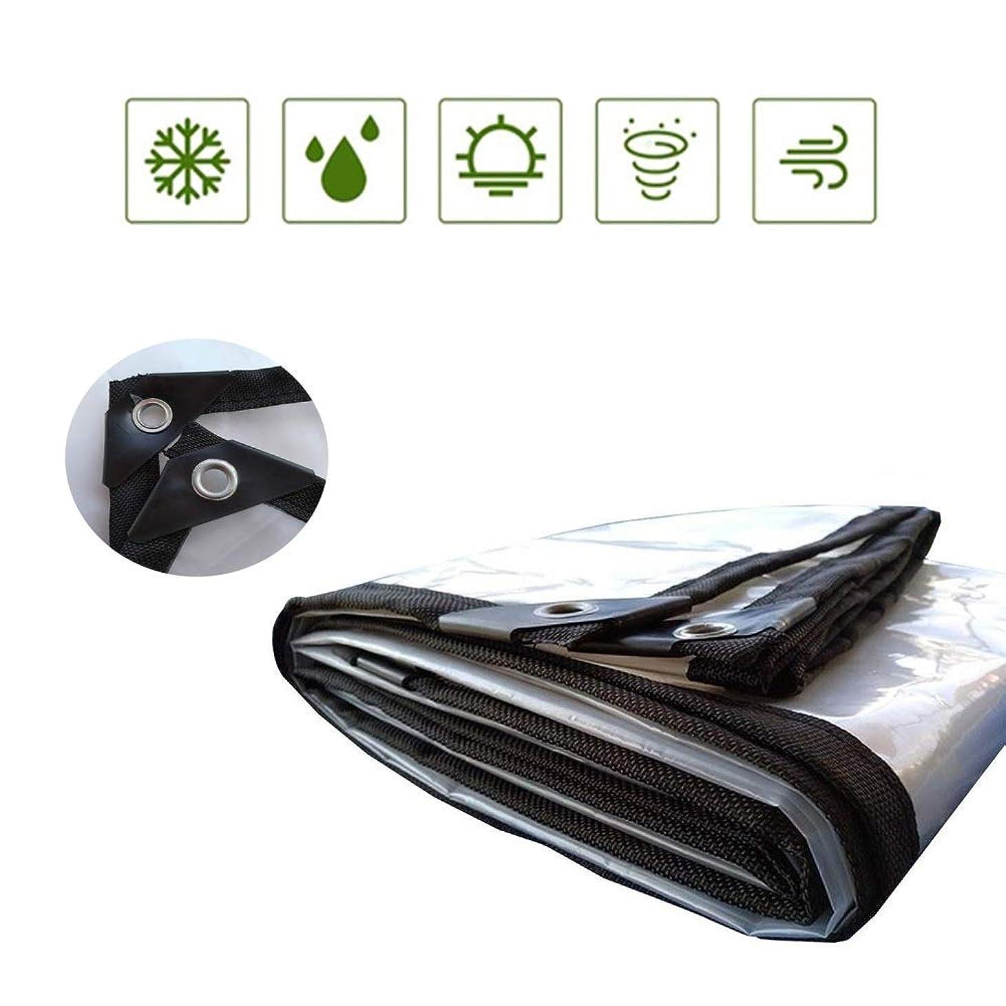 ほんの記憶苦LCAIHUA トランスペアレントターポリンターププラス厚い防雨防水アウトドア多肉植物バルコニーアウトドア、カスタマイズ可能 、16サイズ (Color : Clear, Size : 3x4.0m)