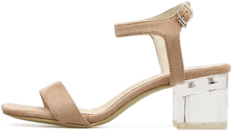 Summer Sandals Women shoes Flock Transparent Heels Retro Sandals shoes