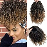 SEIKEA Drawstring Ponytail Curly Kinky for Black Women Afro Puff Drawstring Ponytail Natural Soft Synthetic Hairpieces Clip in Hair Extensions 9 Inch Color Dark Brown& Blonde