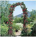 HLZY Mobili da Giardino Arch Decorazione di Alta qualità Garden Arco, Giardino Pergola Metallo Decorativo Arco Ideale for la Coltivazione di Qualsiasi Tipo di Piante rampicanti