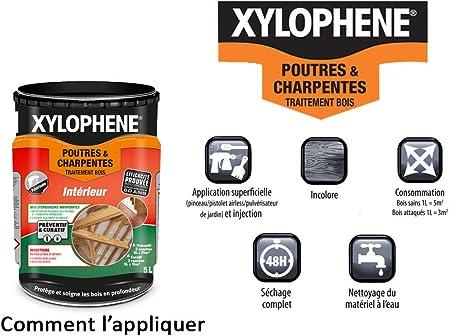 Xylophene Traitement Poutres Charpentes Anti Insectes Traite Les Bois De Charpente Incolore 1l Amazon Fr Bricolage