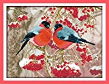 Maydear Cross Stitch Stamped Kits Full Range of Embroidery Starter Kits Beginners for DIY 11CT 3 Strands -...