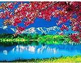 LLXJLUCKY Juego de punto de cruz, 11 hilos, estampado simple, bordado para adultos, artesanías, accesorios de punto de cruz, juego de bordado, costura - hermoso paisaje del lago, 40,6 x 50,8 cm