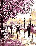 Paint by Number Kit, Diy pintura al óleo dibujo Cherry Canvas con pinceles decoración navideña decoraciones regalos - 16 * 20 pulgadas sin marco
