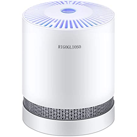 RIGOGLIOSO HEPA Air Purifier for Smoke, Pollen, Pet Dander, Odor, Dust Remove, Compact Air Purifiers for Home Bedroom, Kitchen and Office, No Ozone Air Cleaner, GL-2109