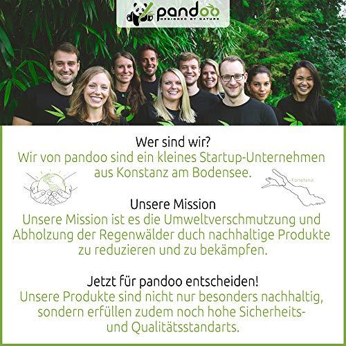pandoo Kokosnuss Schalen 2er Set - 100% Naturprodukt - Plastikfreie Alternative - Handgefertigt und mit Kokosöl poliert - 7