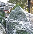 Wareon Halloween Decorations Outdoor & Indoor 960 sqft Spider Web with 80 Small Plastic Spiders Scary Haunted House Web Party Halloween Decor Supplies Clearance Home Yard House Decor (290g/10.2 oz)